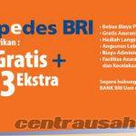 Jenis Produk Kredit Pinjaman Dari Bank BRI 2017