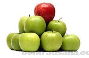 Keuntungan, manfaat dan tujuan diferensiasi produk dan contoh