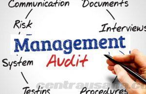 Audit Manajemen: Pengertian, Tujuan, Ruang Lingkup dan Kelemahannya